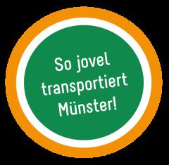stoerer-cargo-jovel